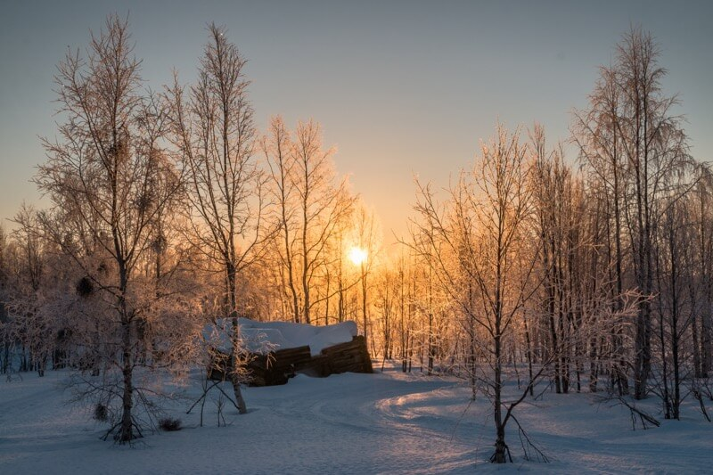 winter images 23 (1)