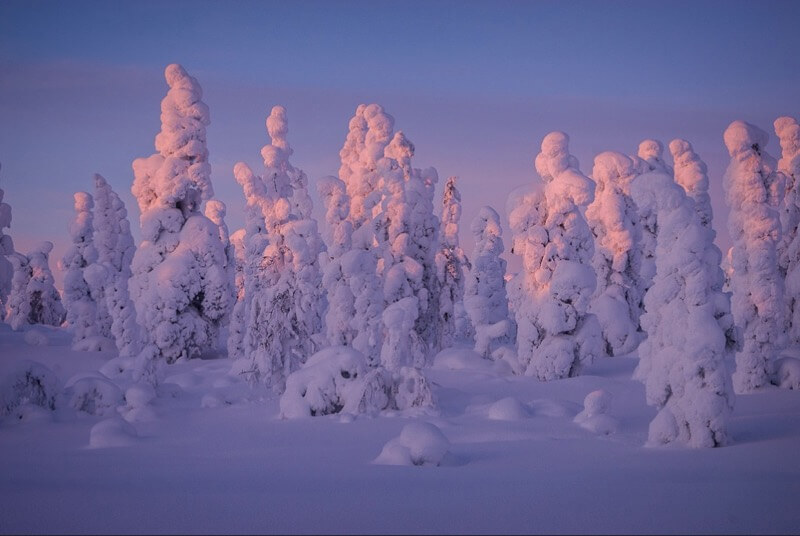 winter images 24 (1)