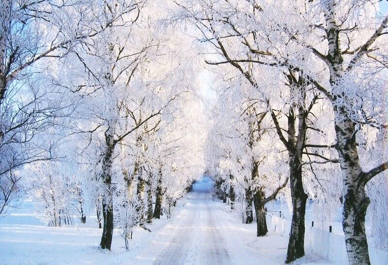 winter photos 34 (1)