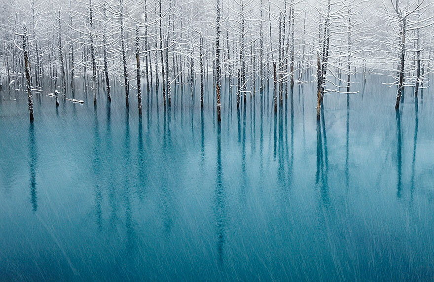 winter pics 4 (1)