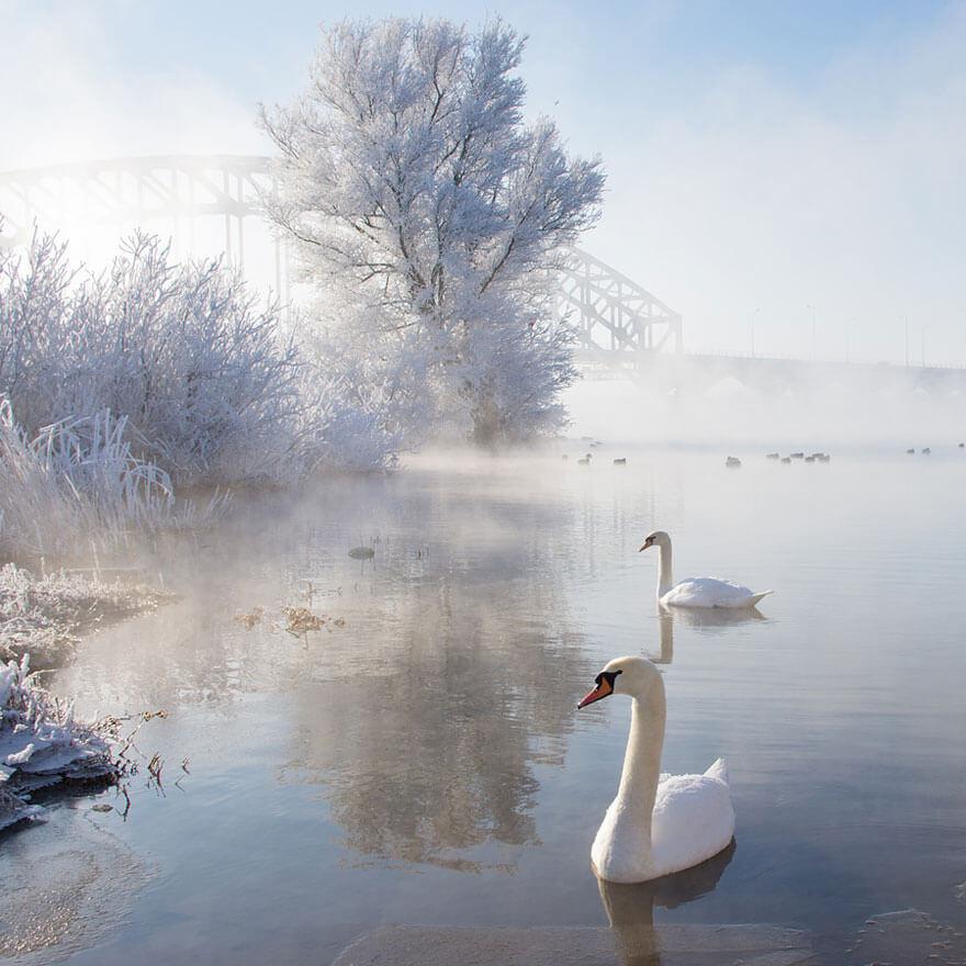 winter pics 8 (1)