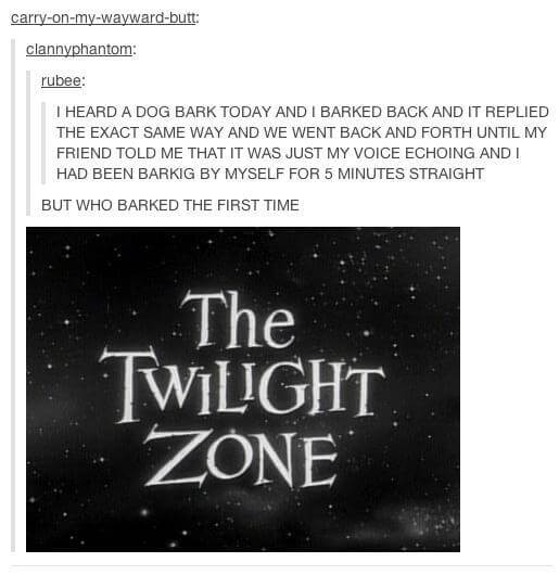 funniest tumblr posts 16 (1)