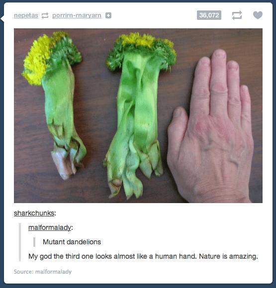 epic tumblr posts 52 (1)