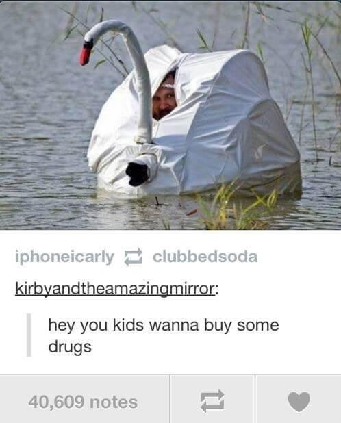 funny tumblr posts 7 (1)