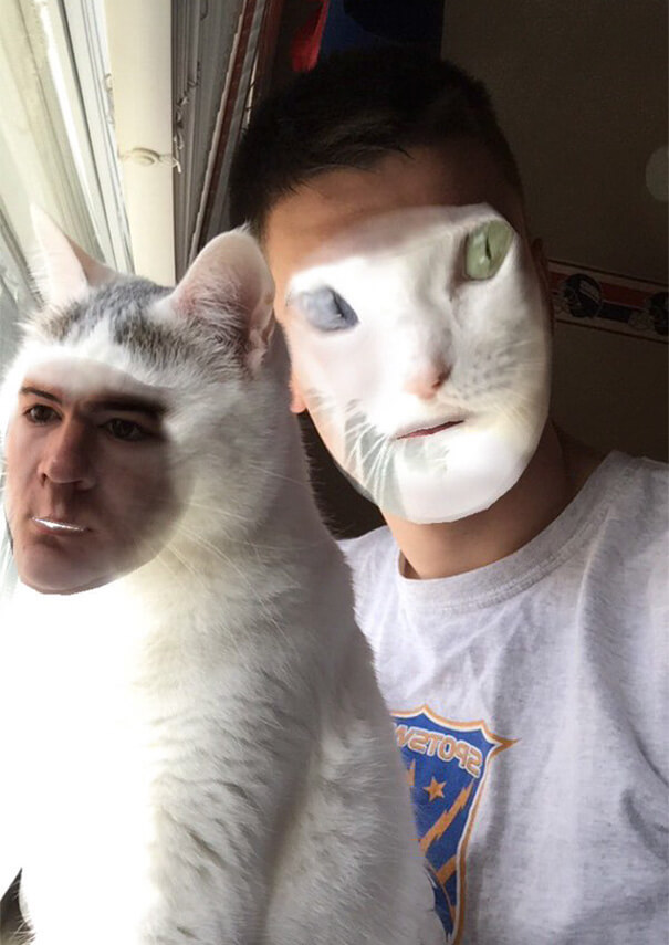Face Swap Dog And Cat