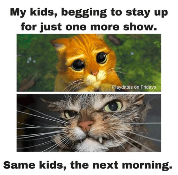 funny parenting pics 73 (1)