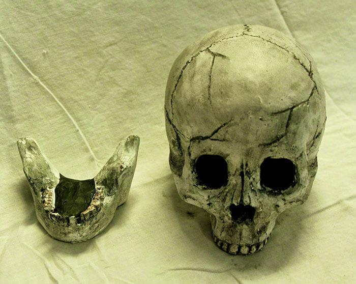 skull fire pit logs 3 (1)