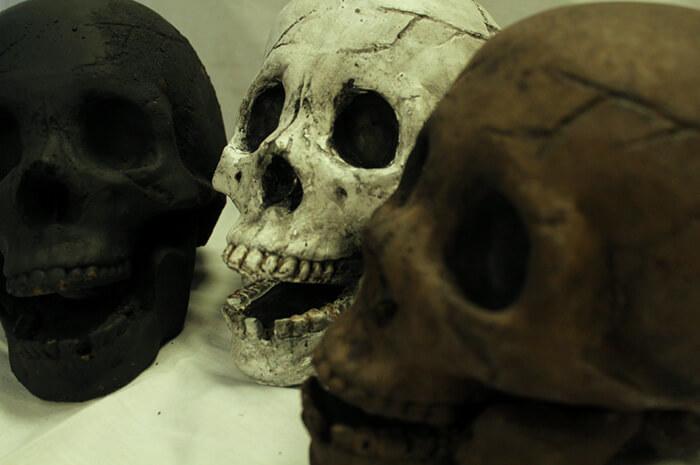 skull fire pit logs 5 (1)