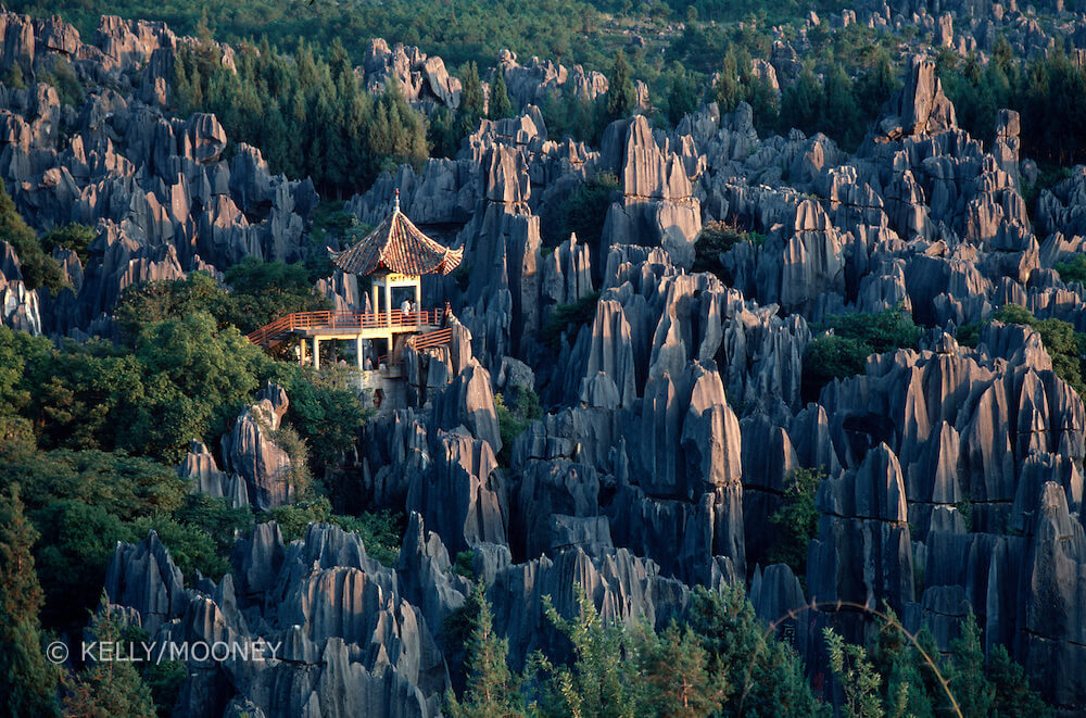 stone forest china 3 (1)