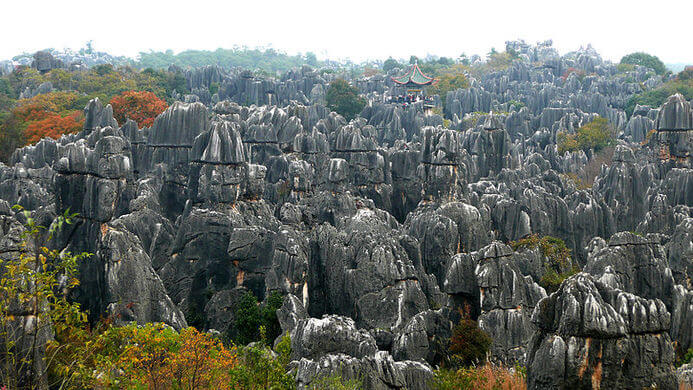 stone forest china 7 (1)