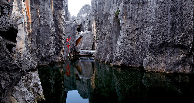 stone forest china 8 (1)
