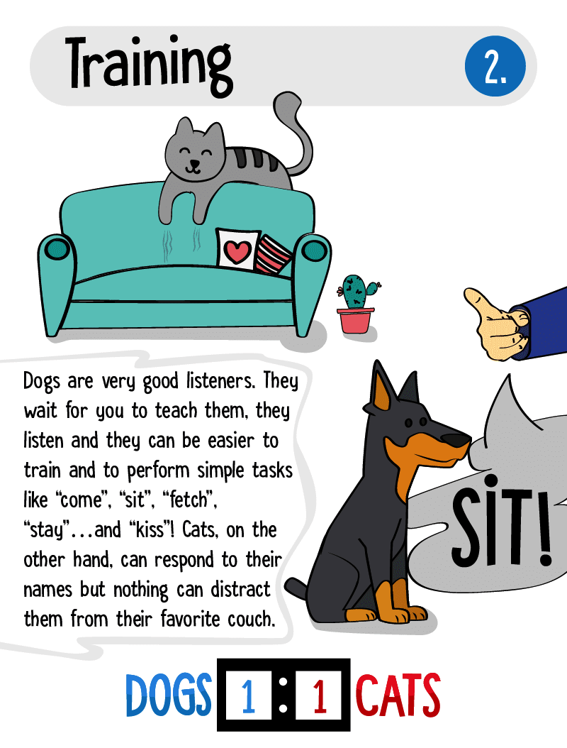 why dogs are better than cats 3