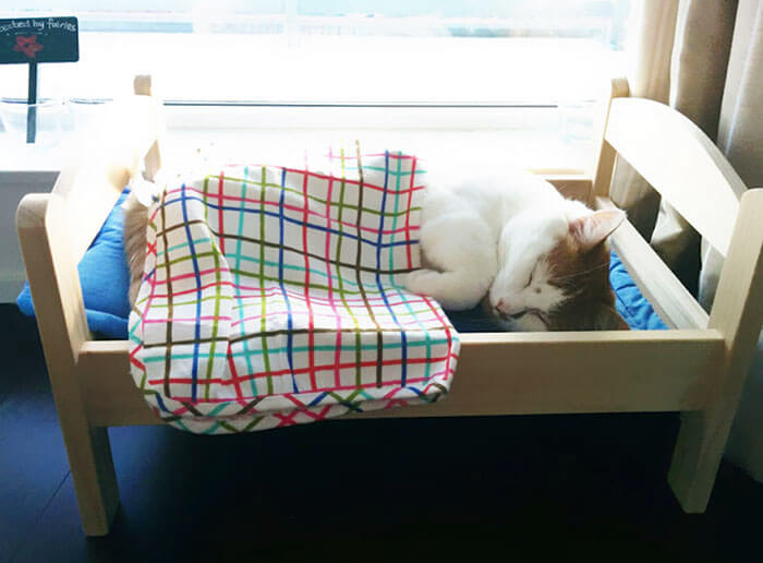 IKEA Donates Doll Beds To Shelter (1)