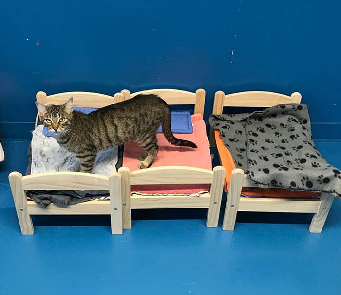 IKEA Donates Doll Beds To Shelter 3 (1)