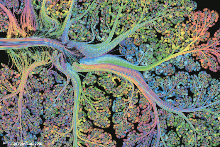 Visualizations of Brain Scans 4 (1)