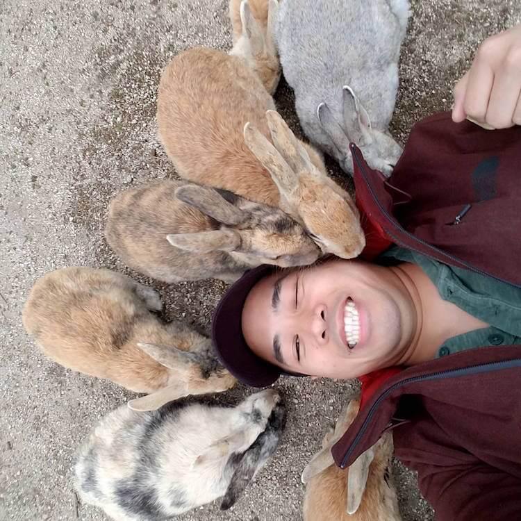 okunoshima rabbit island 8 (1)