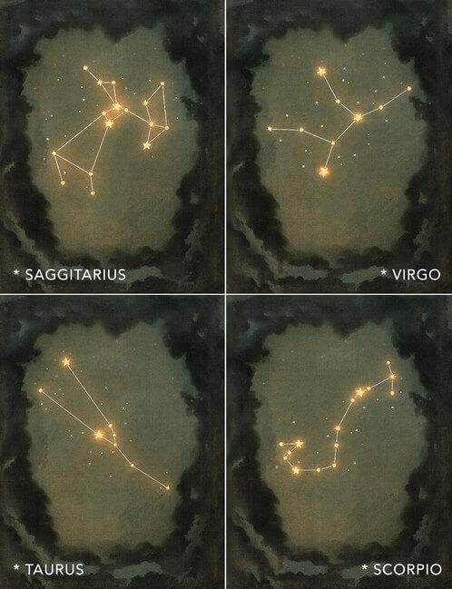 Zodiac Sky munstre 6