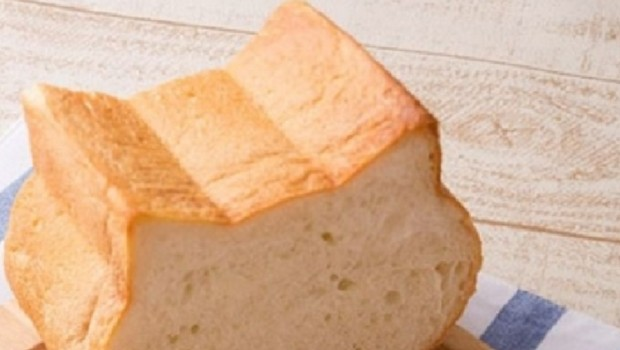 cat shaped bread feat