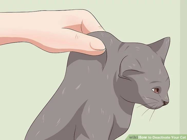 how to deactivate a cat 5