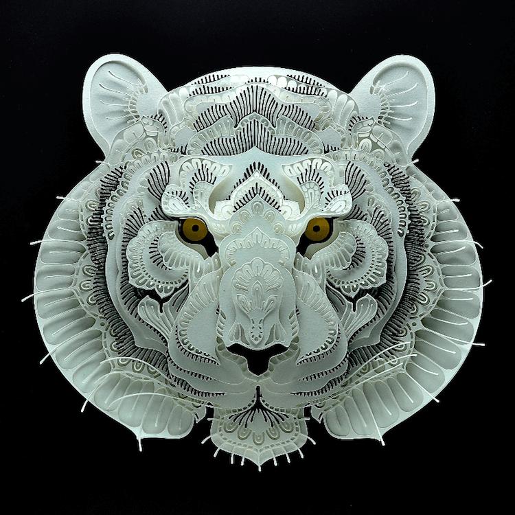 paper portraits endangerd animals