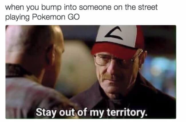 pokemon go puns 4
