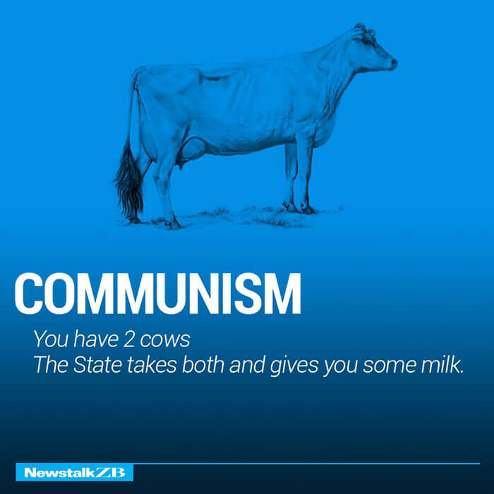the world economy explained with cows 13