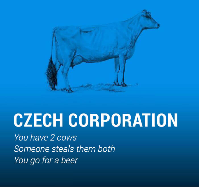the world economy explained with cows 20