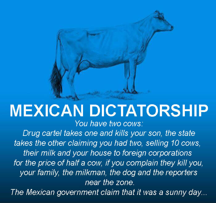 the world economy explained with two cows 23