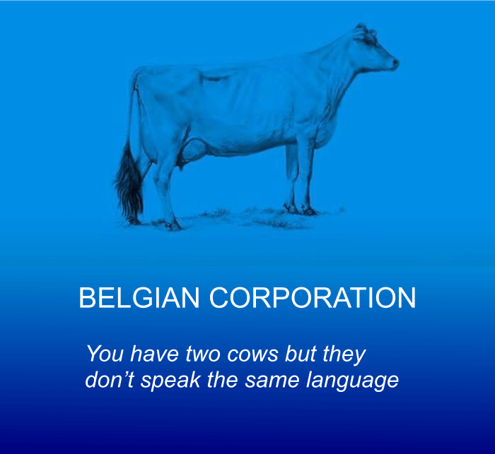 the world economy explained with two cows 28