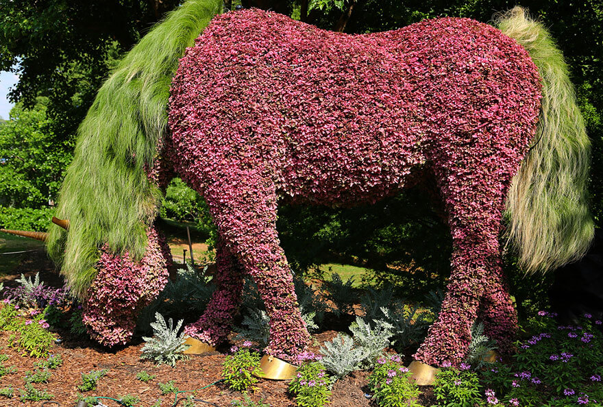 this botanical garden features a 14-foot topiary dragon 4