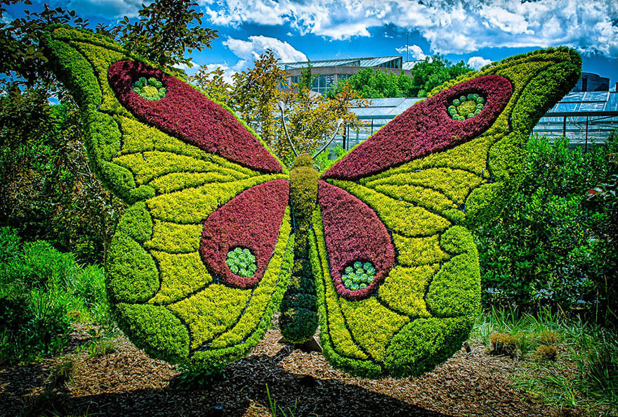 this botanical garden features a 14-foot topiary dragon 5