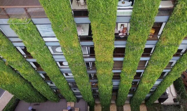 vertical garden building 3