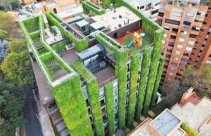 vertical garden building feat
