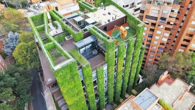 vertical garden building feat