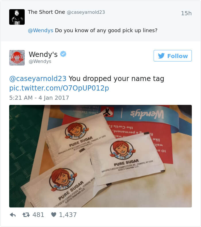 wendy's twitter roasts 9