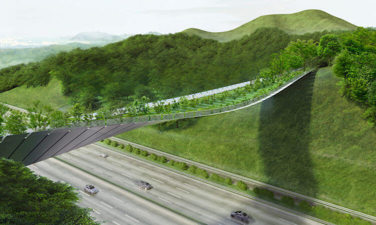 Yangjaegogae Eco-bridge Design Competition