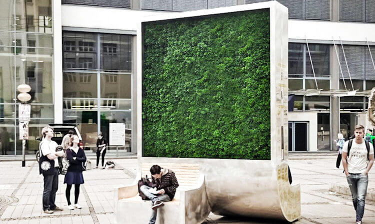 citytrees urban forest wall 5