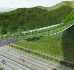 eco friendly bridge highway feat (1)