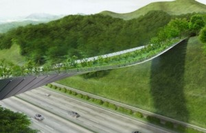 eco friendly bridge highway feat (1)