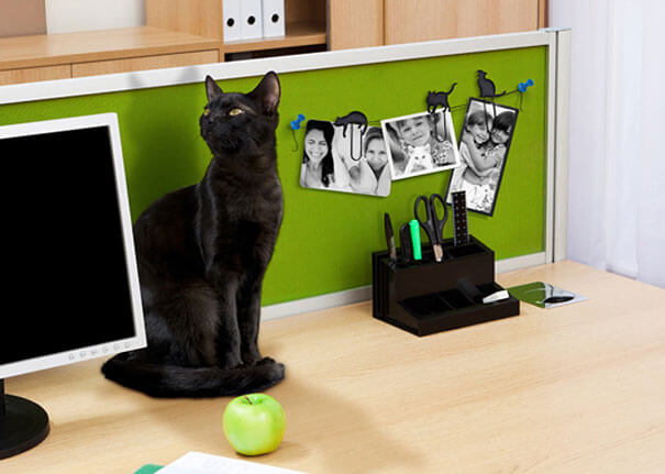 gifts for pet lovers 21