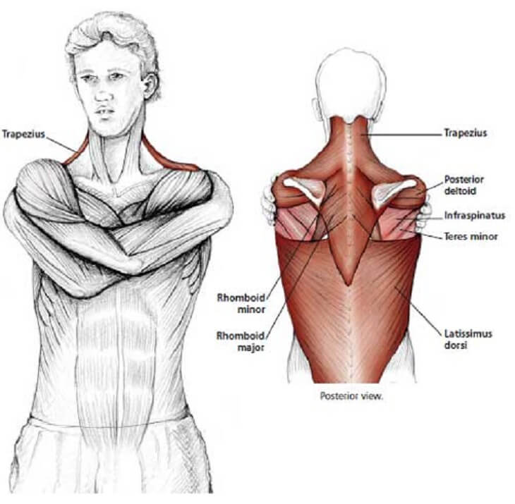 how to release tension in your neck 10