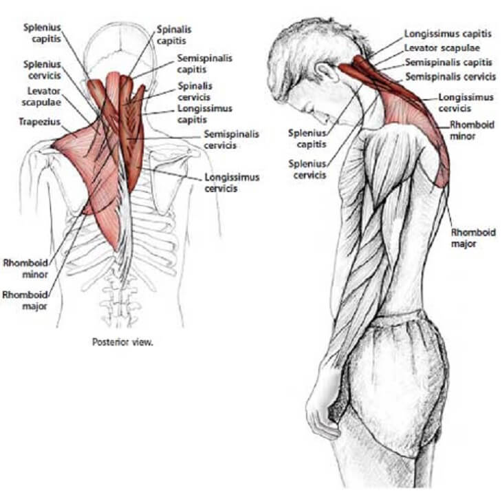 how to release tension in your neck 3