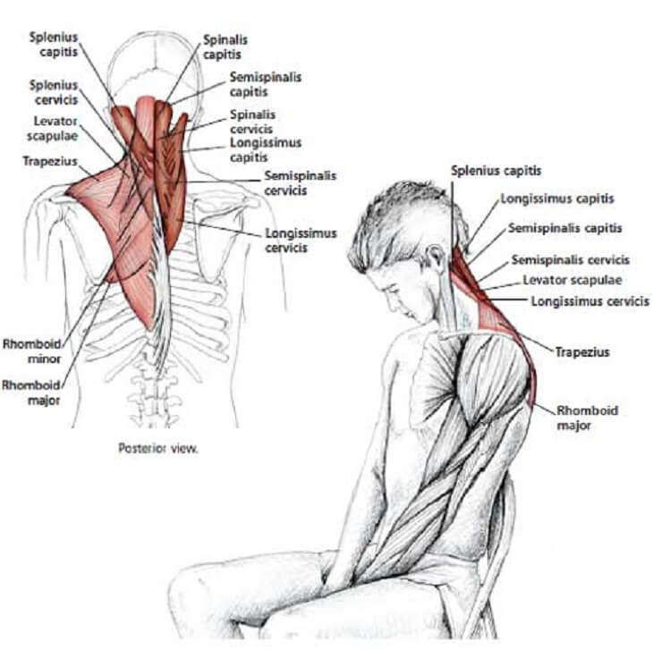 how to release tension in your neck 7