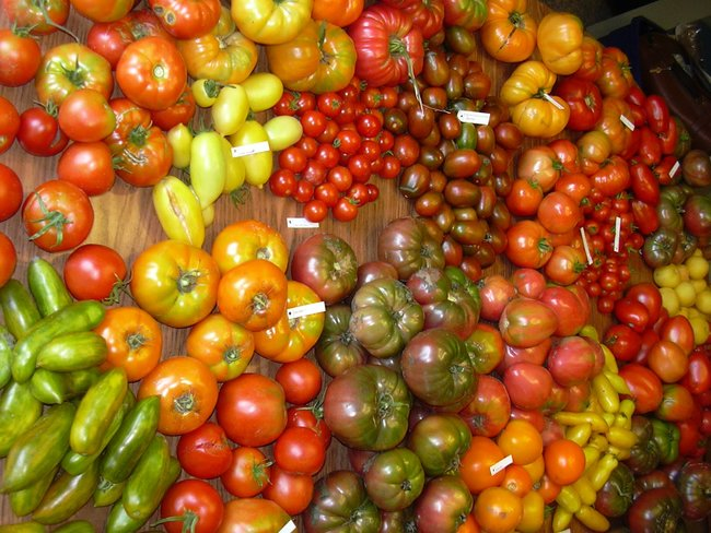 rsz_heirloom-tomatoes-6