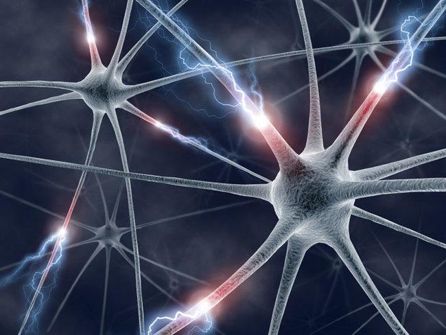 rsz_neuron