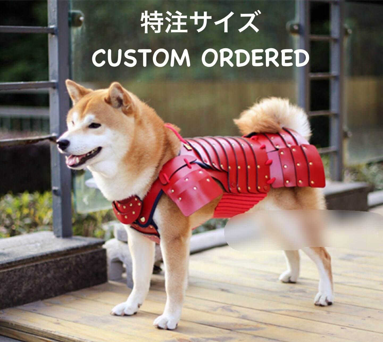 samurai cat armour 5