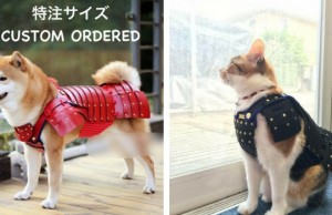 samurai cat armour feat