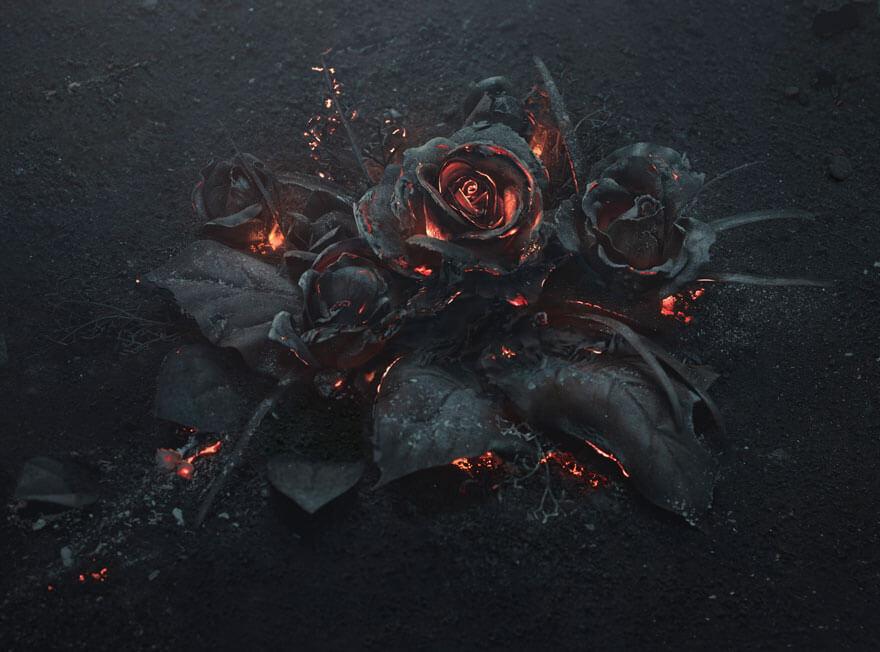 Burning Roses (1)