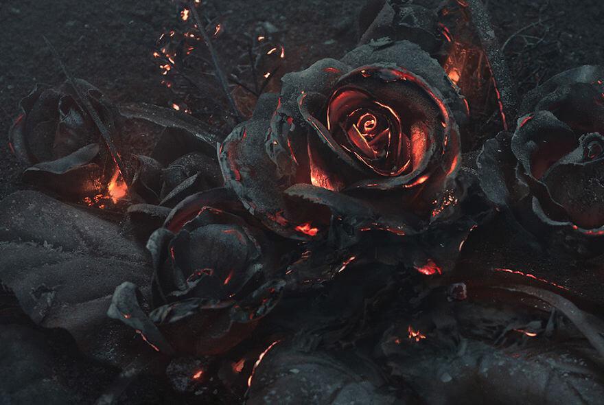Burning Roses 2 (1)