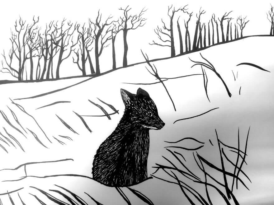 dark foxes 43